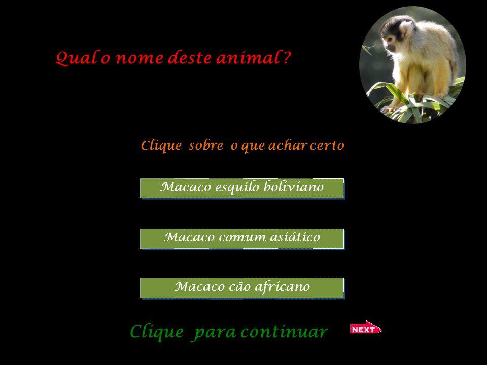 Qual o nome deste animal Clique sobre o que achar certo