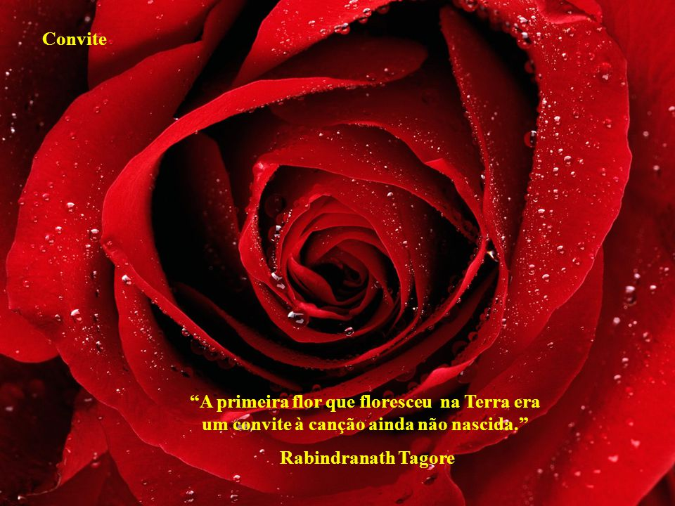 Convite A primeira flor que floresceu na Terra era um convite à canção ainda não nascida. Rabindranath Tagore.