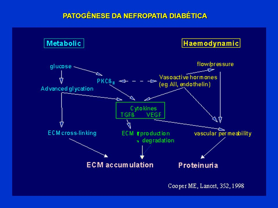 PATOGÊNESE DA NEFROPATIA DIABÉTICA