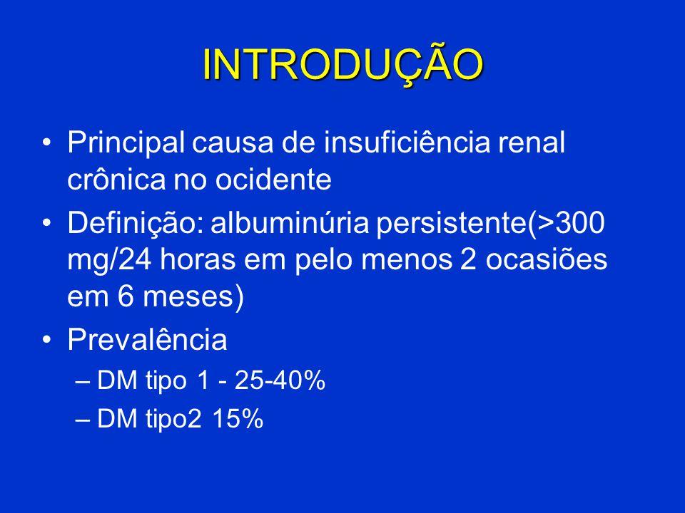 INTRODUÇÃO Principal causa de insuficiência renal crônica no ocidente