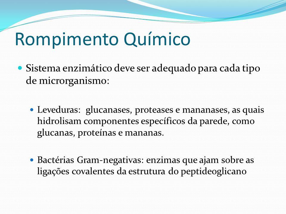 Rompimento Químico Sistema enzimático deve ser adequado para cada tipo de microrganismo: