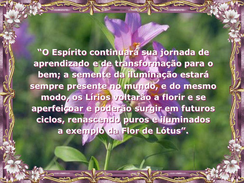 a exemplo da Flor de Lótus .