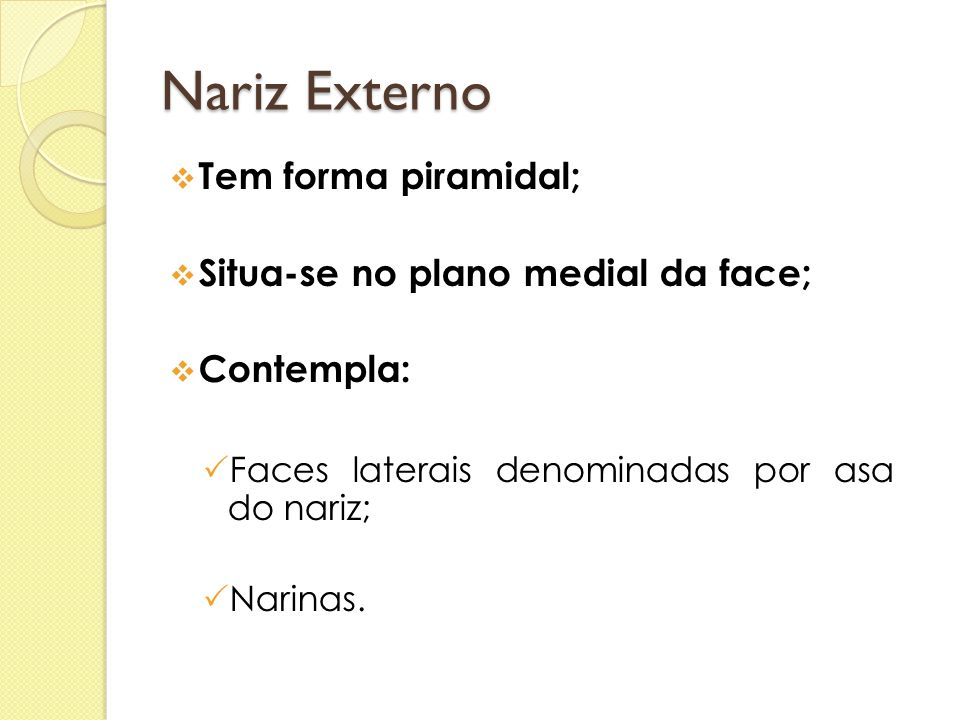 Nariz Externo Tem forma piramidal; Situa-se no plano medial da face;