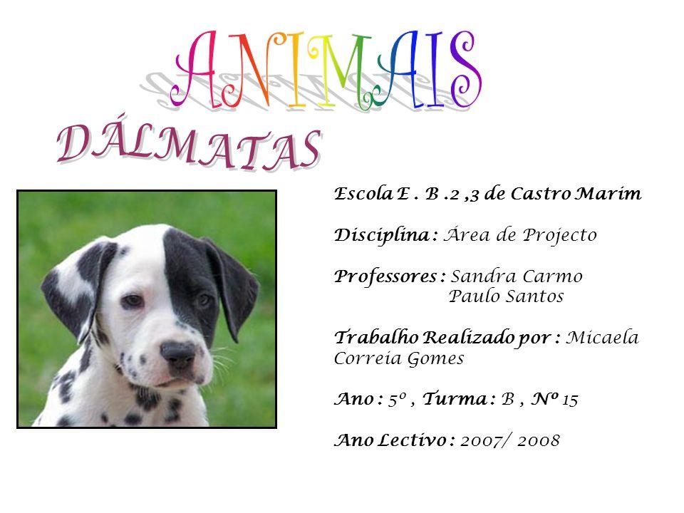 ANIMAIS DÁLMATAS Escola E . B .2 ,3 de Castro Marim