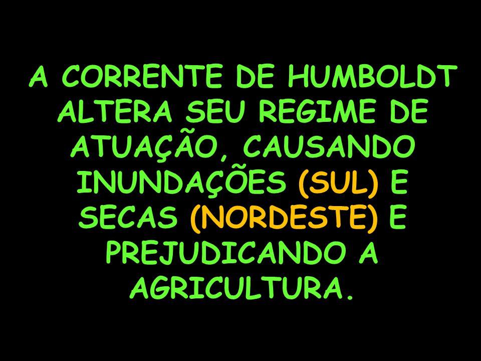A CORRENTE DE HUMBOLDT ALTERA SEU REGIME DE ATUAÇÃO, CAUSANDO INUNDAÇÕES (SUL) E SECAS (NORDESTE) E PREJUDICANDO A AGRICULTURA.