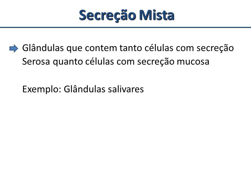 Secreção Mista Glândulas que contem tanto células com secreção