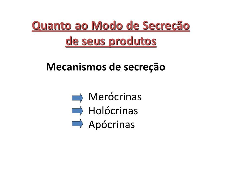 Quanto ao Modo de Secreção de seus produtos