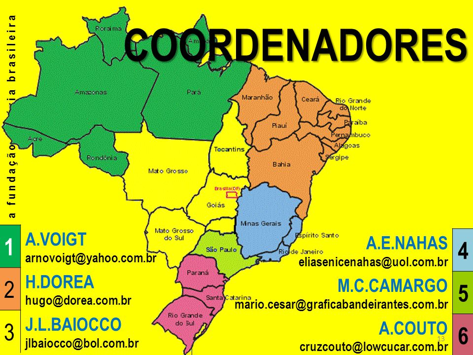 COORDENADORES 1 4 2 5 3 6 A.VOIGT A.E.NAHAS H.DOREA M.C.CAMARGO