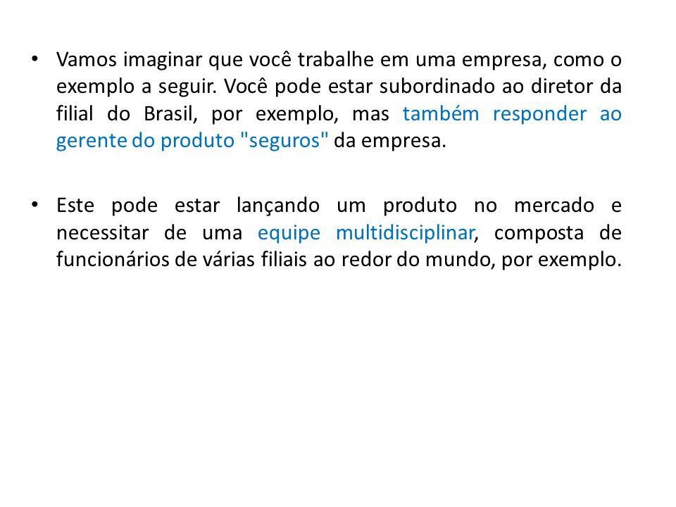 Vamos imaginar que você trabalhe em uma empresa, como o exemplo a seguir. Você pode estar subordinado ao diretor da filial do Brasil, por exemplo, mas também responder ao gerente do produto seguros da empresa.
