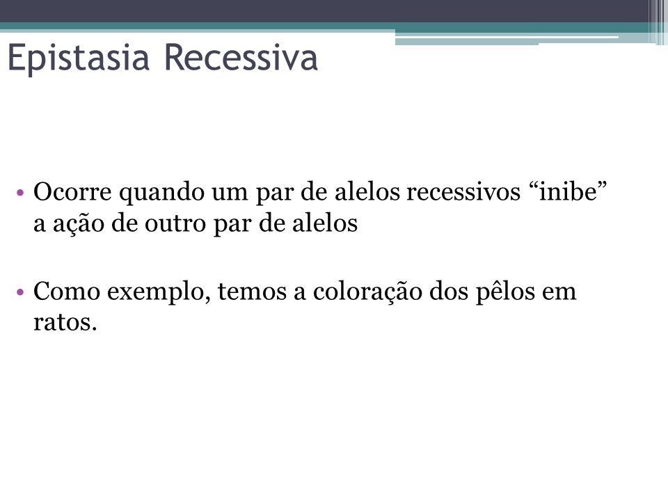 Epistasia Recessiva Ocorre quando um par de alelos recessivos inibe a ação de outro par de alelos.