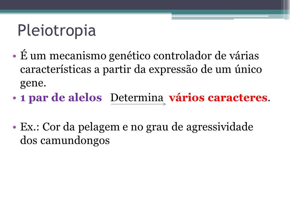Pleiotropia É um mecanismo genético controlador de várias características a partir da expressão de um único gene.