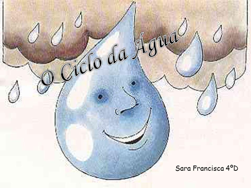 O Ciclo da Água Sara Francisca 4ºD
