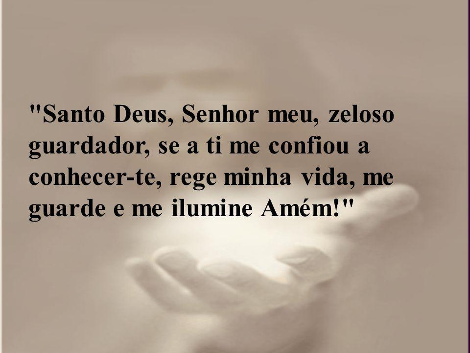 Santo Deus, Senhor meu, zeloso guardador, se a ti me confiou a conhecer-te, rege minha vida, me guarde e me ilumine Amém!