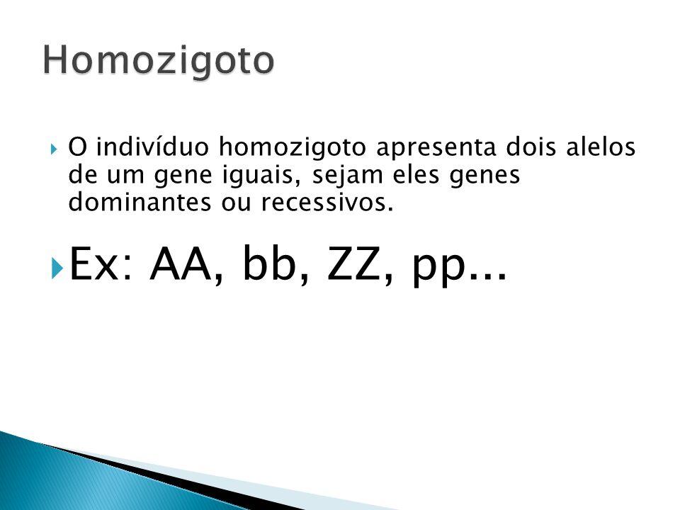 Ex: AA, bb, ZZ, pp... Homozigoto