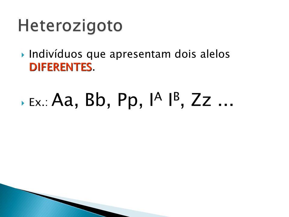 Heterozigoto Indivíduos que apresentam dois alelos DIFERENTES.