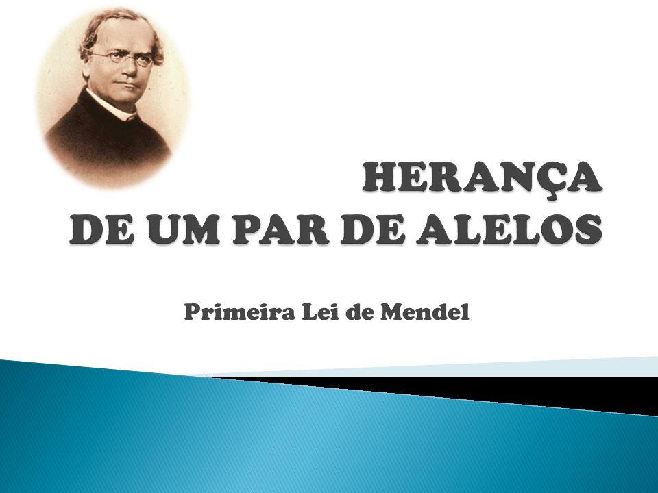 HERANÇA DE UM PAR DE ALELOS