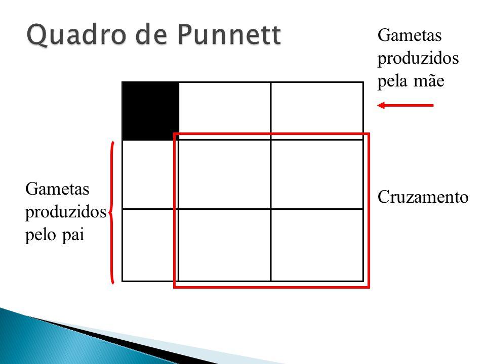 Quadro de Punnett Gametas produzidos pela mãe
