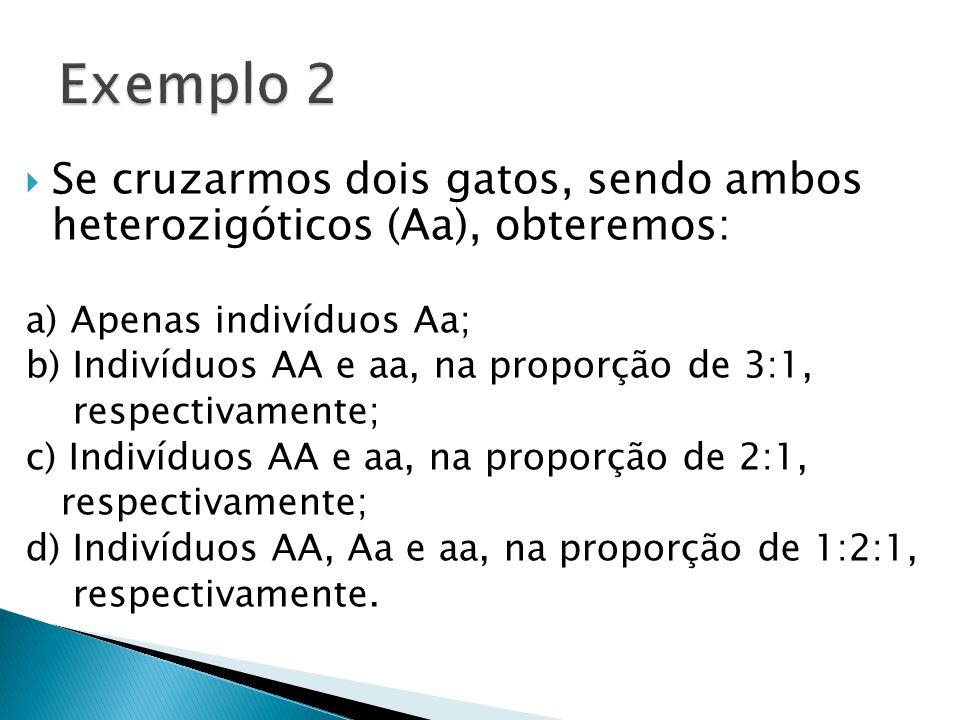 Exemplo 2 Se cruzarmos dois gatos, sendo ambos heterozigóticos (Aa), obteremos: a) Apenas indivíduos Aa;