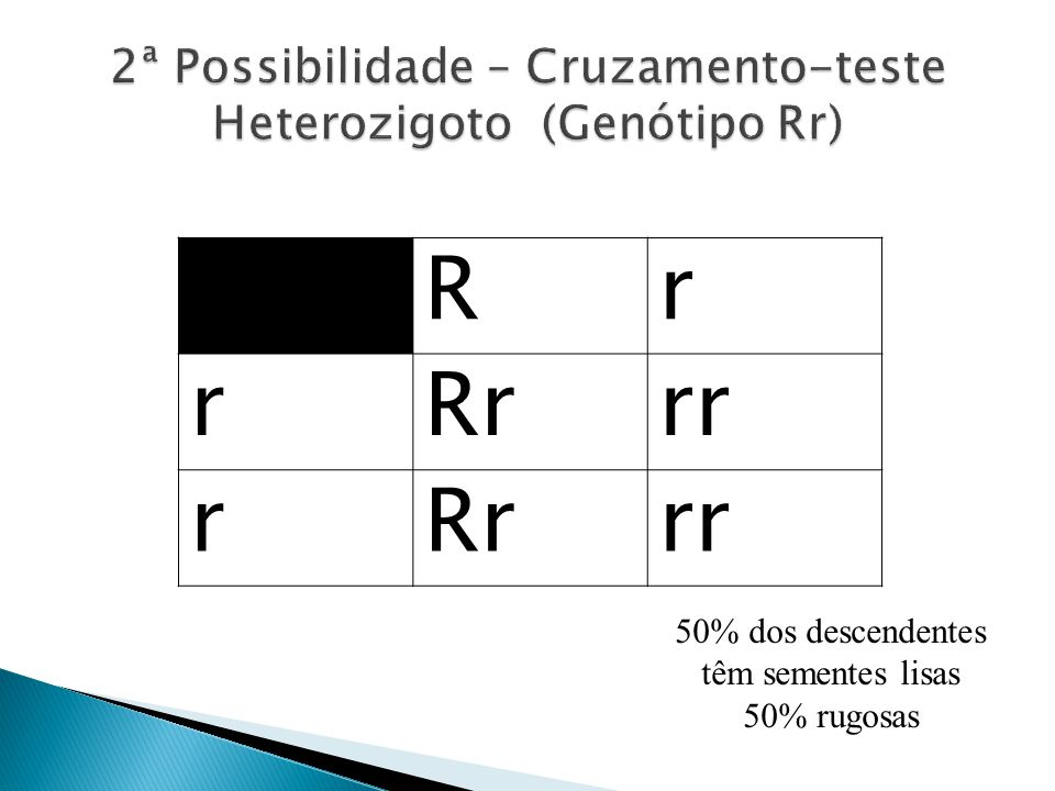 2ª Possibilidade – Cruzamento-teste Heterozigoto (Genótipo Rr)
