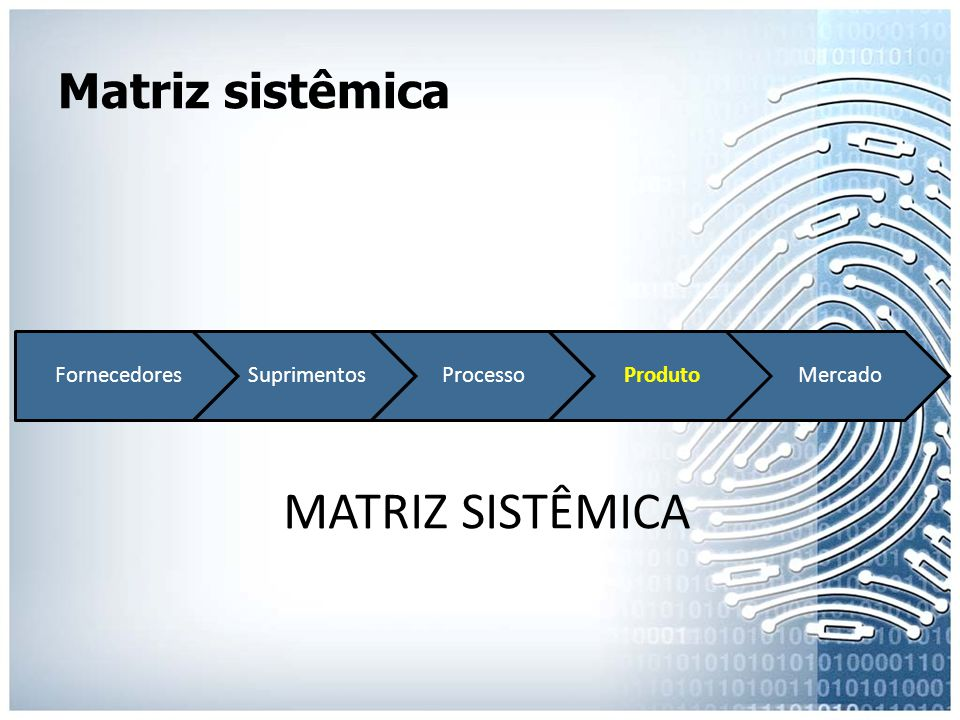 MATRIZ SISTÊMICA Matriz sistêmica Fornecedores Suprimentos Processo