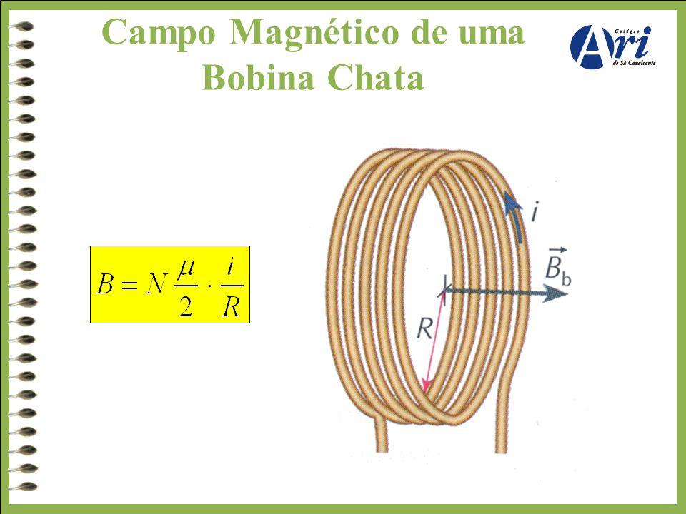 Campo Magnético de uma Bobina Chata