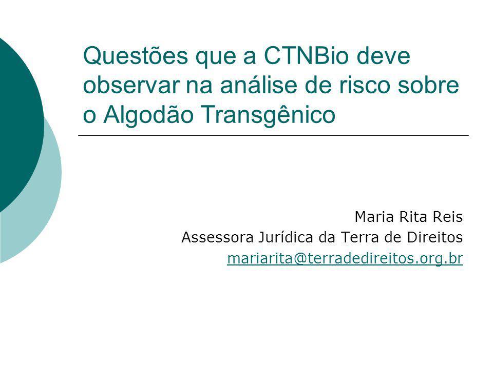Questões que a CTNBio deve observar na análise de risco sobre o Algodão Transgênico