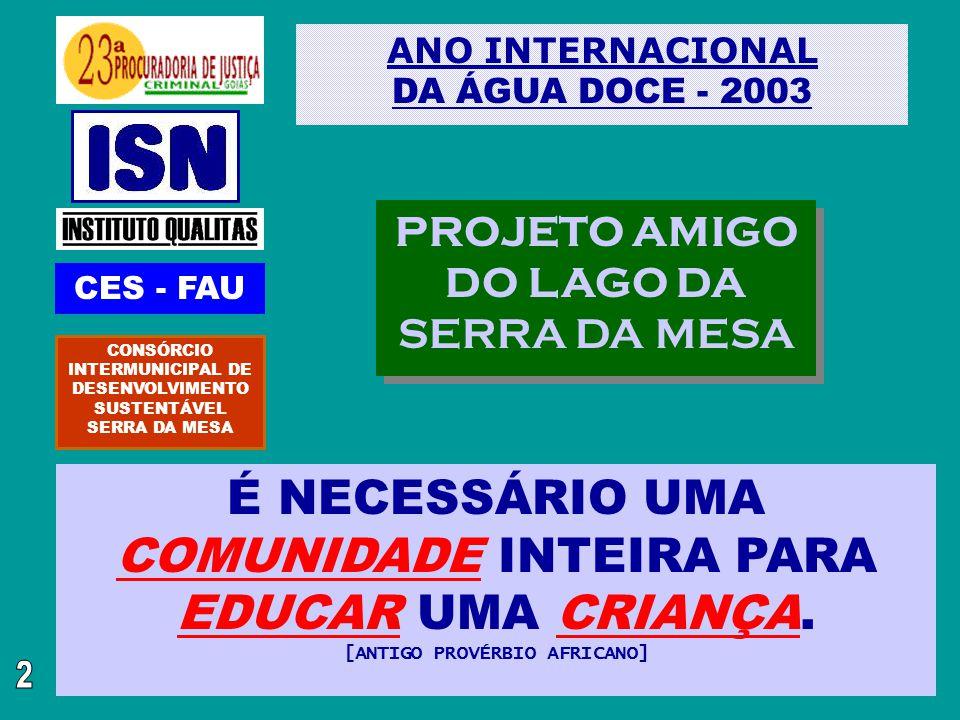 É NECESSÁRIO UMA COMUNIDADE INTEIRA PARA EDUCAR UMA CRIANÇA.