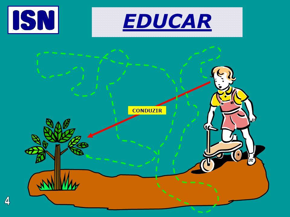 EDUCAR CONDUZIR 4