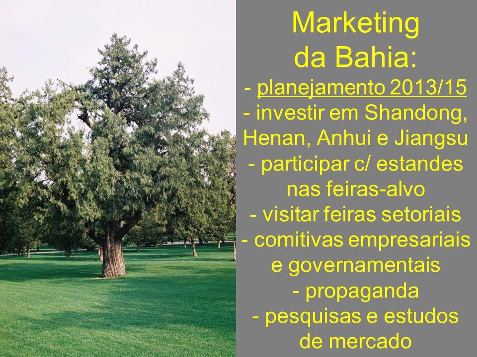 Marketing da Bahia: - planejamento 2013/15 - investir em Shandong, Henan, Anhui e Jiangsu - participar c/ estandes nas feiras-alvo - visitar feiras setoriais - comitivas empresariais e governamentais - propaganda - pesquisas e estudos de mercado
