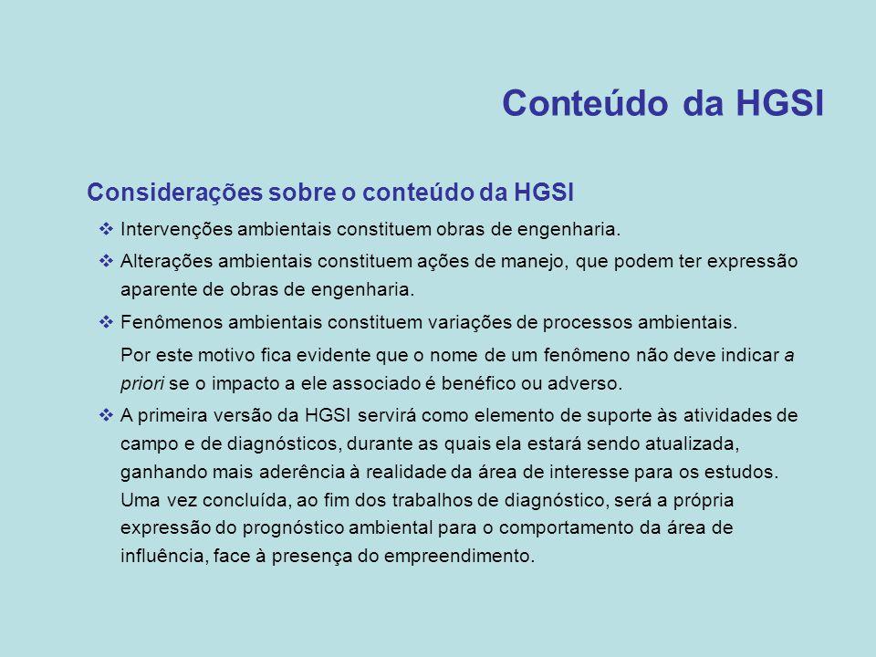 Conteúdo da HGSI Considerações sobre o conteúdo da HGSI