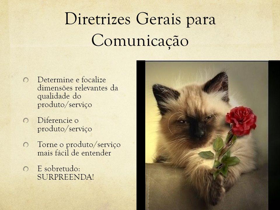Diretrizes Gerais para Comunicação