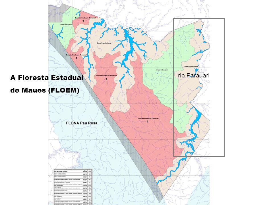 rio Parauari A Floresta Estadual de Maues (FLOEM)