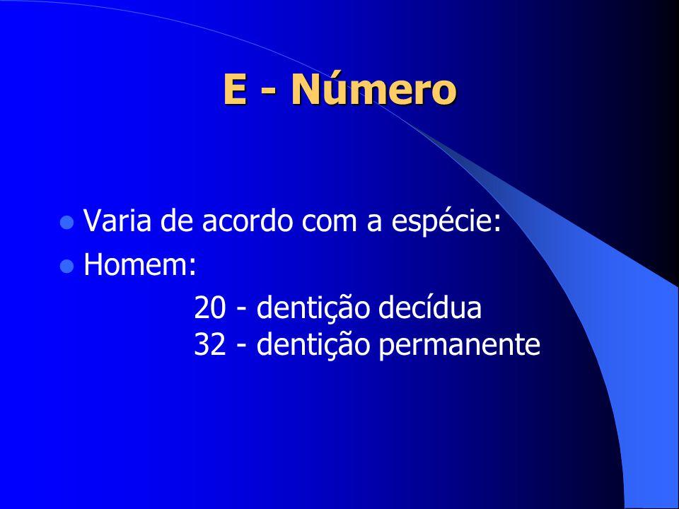 E - Número Varia de acordo com a espécie: Homem: