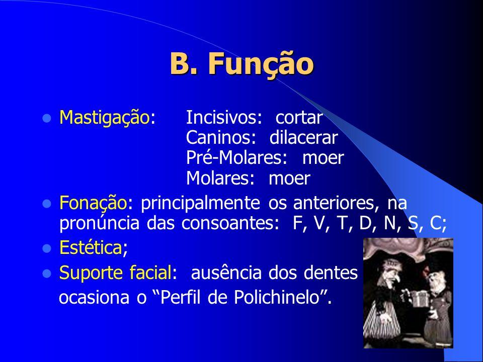 B. Função Mastigação: Incisivos: cortar Caninos: dilacerar Pré-Molares: moer Molares: moer.