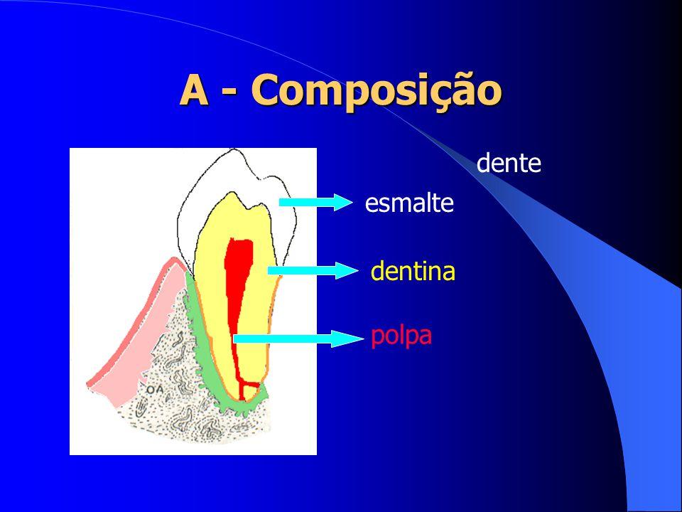 A - Composição dente esmalte dentina polpa