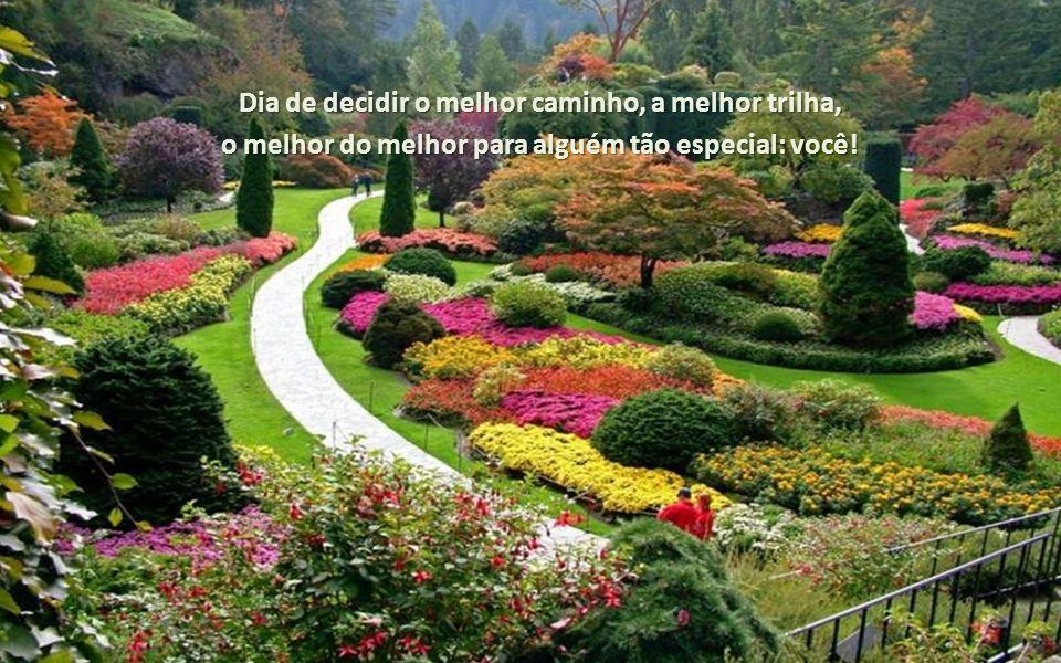 Dia de decidir o melhor caminho, a melhor trilha,