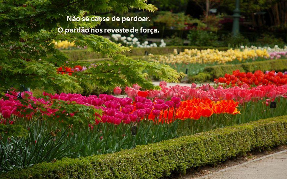 O perdão nos reveste de força.