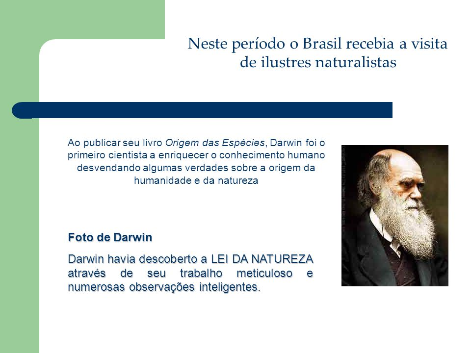 Neste período o Brasil recebia a visita de ilustres naturalistas