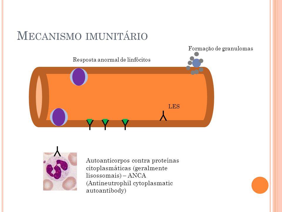 Y Y Y Y Y Mecanismo imunitário