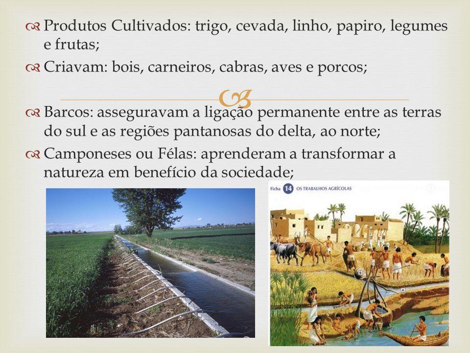 Produtos Cultivados: trigo, cevada, linho, papiro, legumes e frutas;