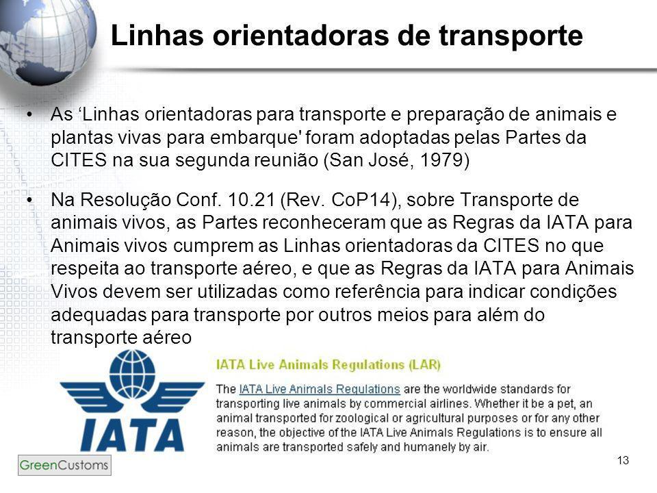 Linhas orientadoras de transporte