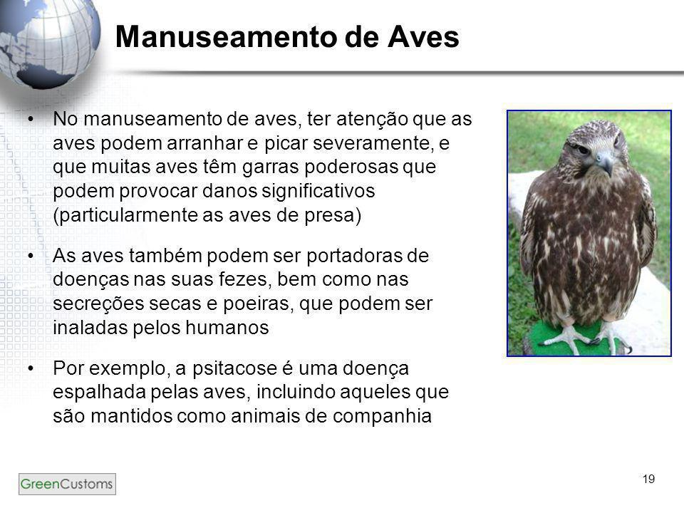 Manuseamento de Aves