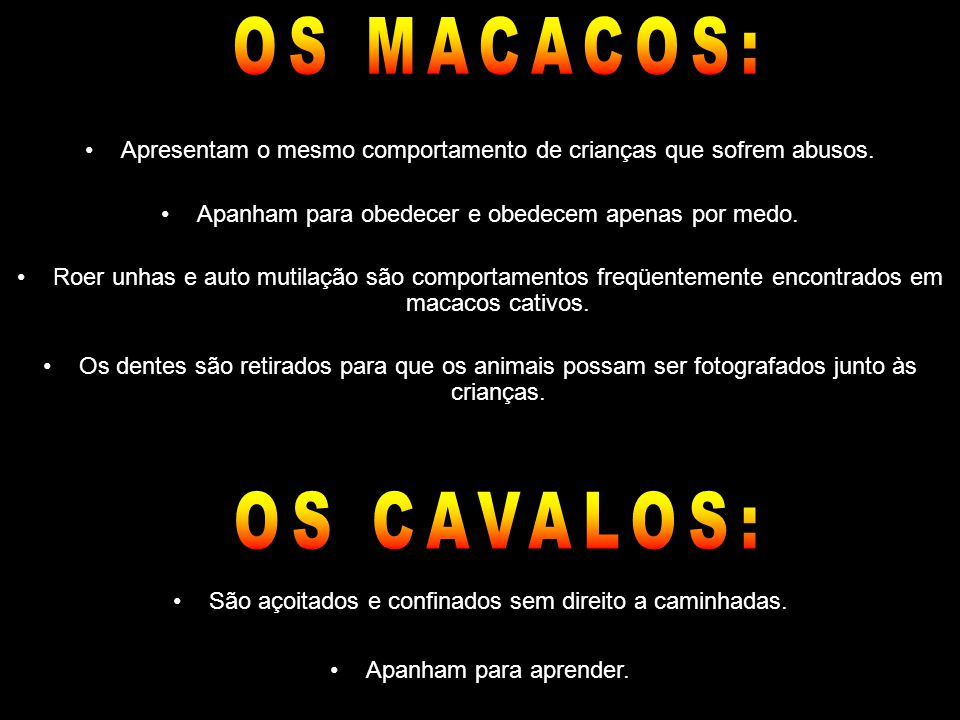 OS MACACOS: OS CAVALOS: