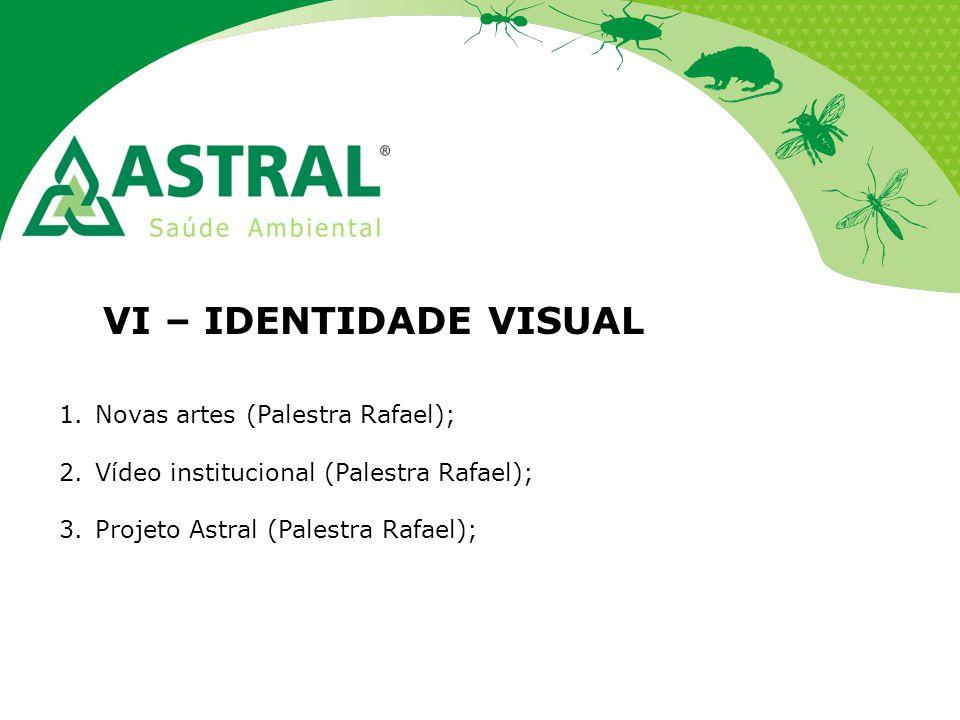 VI – IDENTIDADE VISUAL Novas artes (Palestra Rafael);