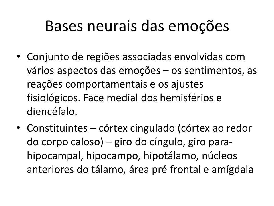 Bases neurais das emoções