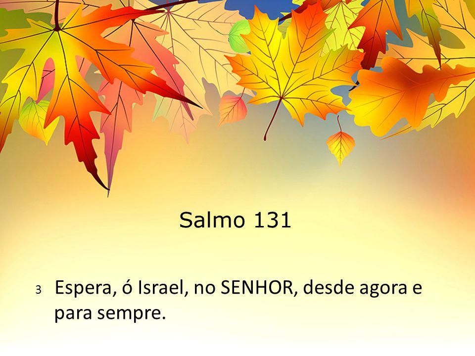 Salmo 131 3 Espera, ó Israel, no SENHOR, desde agora e para sempre.