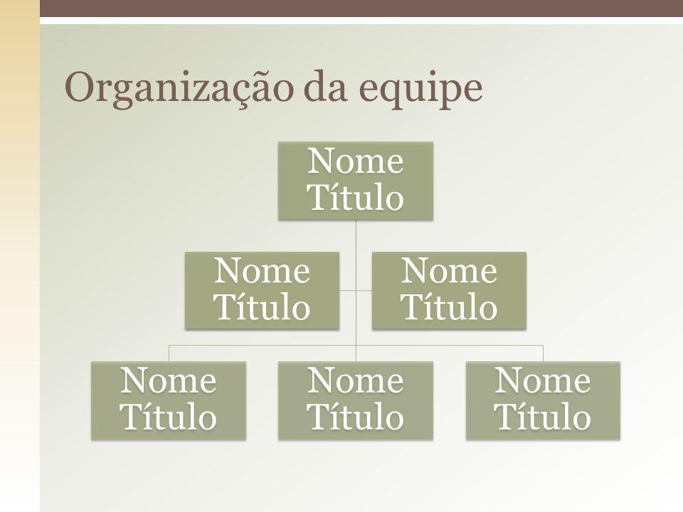 Organização da equipe Nome Título
