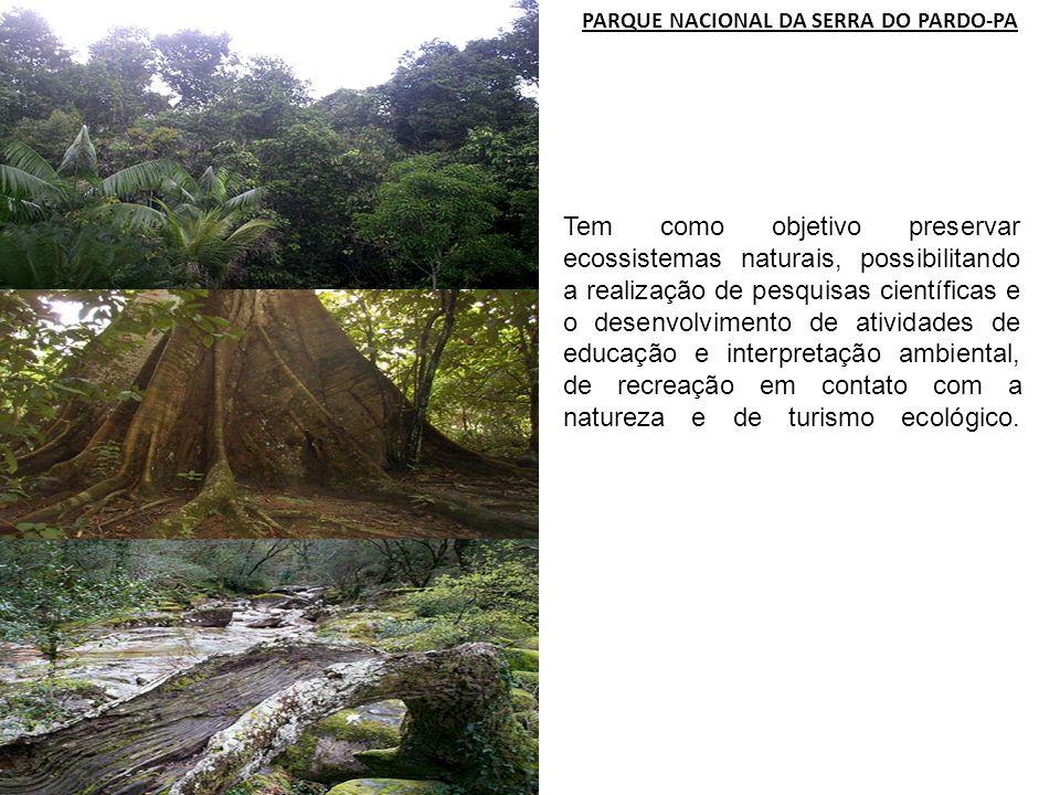 PARQUE NACIONAL DA SERRA DO PARDO-PA