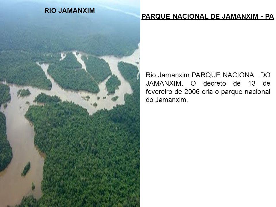 RIO JAMANXIM PARQUE NACIONAL DE JAMANXIM - PA.
