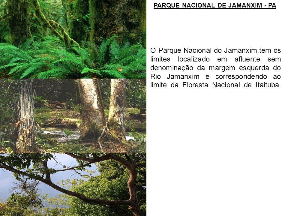 PARQUE NACIONAL DE JAMANXIM - PA